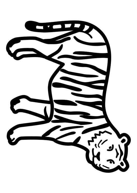 Disegno da colorare tigre ferma cat 10491 for Immagini tigre da colorare