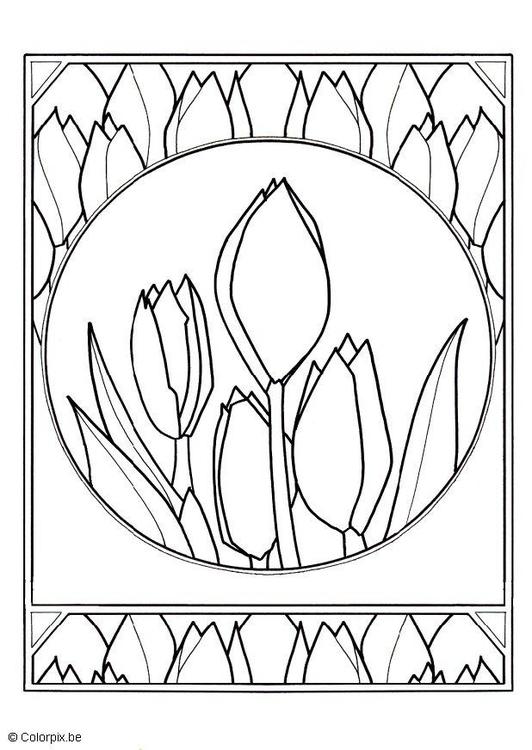 Disegno Da Colorare Tulipani Cat 13833