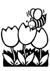 Disegno da colorare tulipani e ape