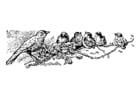 Disegno da colorare uccelli - mamma con pulcini