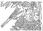 Disegno da colorare uccellino con nido