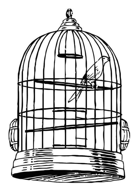 Disegno da colorare uccellino in gabbia cat 20684 for Uccellino disegno