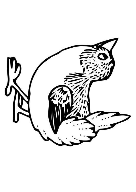 Disegno da colorare uccellino cat 20698 for Uccellino disegno