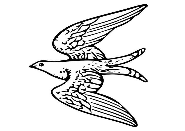 Disegno Da Colorare Uccello In Volo Disegni Da Colorare E Stampare Gratis Imm 20703