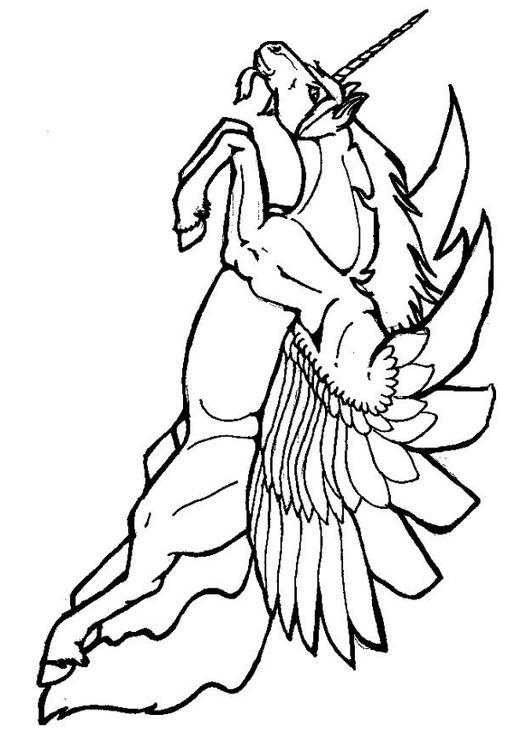 Disegno Da Colorare Unicorno Volante Cat 7131