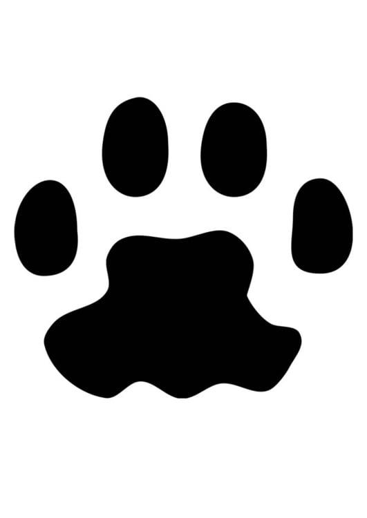 Disegno Da Colorare Zampa Di Gatto Cat 18727 Images