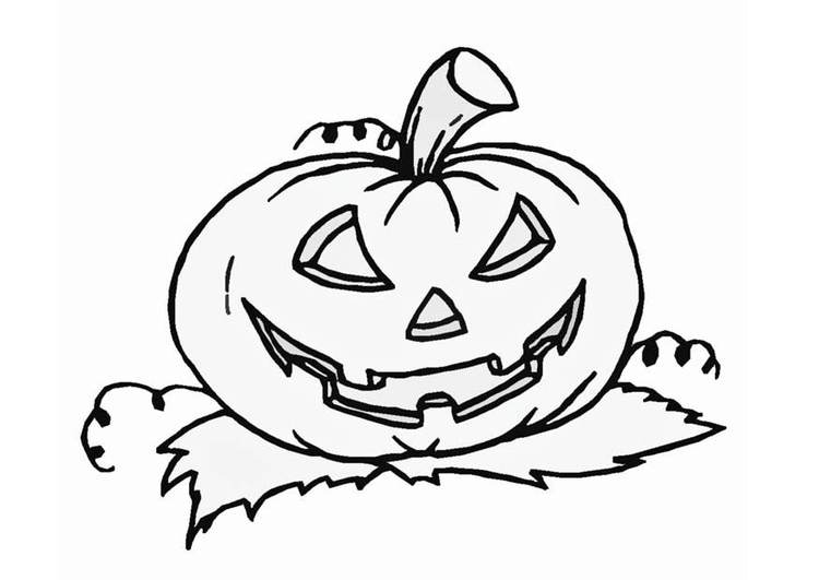 Disegno Da Colorare Zucca Cat 8589 Images