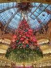 Foto Decorazioni natalizie