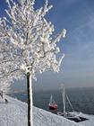 Foto inverno