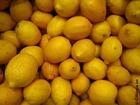 Foto limoni