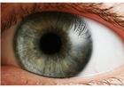 Foto occhio - iride