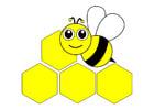 immagine ape - davanti