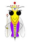 immagine ape regina