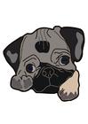 immagine cane - carlino