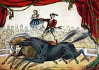 immagine circo