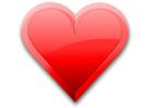 immagine cuore