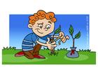 immagine curare un'albero