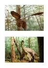 immagine Dinosauro con piume