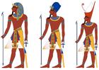 immagine faraona