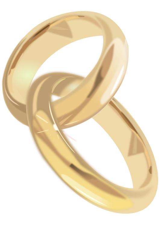 Immagine illustrazione fedi nuziali immagini per uso for Immagini matrimonio da stampare
