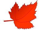 immagine foglia d'autunno
