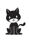 immagine gatto nero