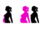 immagine incinta