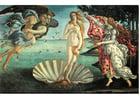 immagine La nascita di Venere - Sandro Botticelli