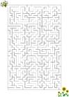immagine labirinto - ape