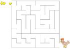 immagine labirinto - pollo