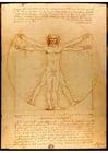 immagine Leonardo da Vinci - L'uomo Vitruviano