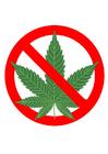 immagine marihuana vietata