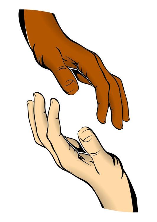 Immagine illustrazione pelle di diversi colori - Immagine di lucertola a colori ...