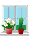 immagine piante