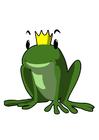 immagine principe ranocchio