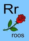 immagine r