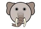 immagine r1 - elefante