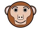 immagine r1- scimmia