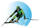 immagine sciare