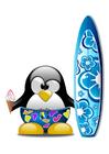 immagine surf