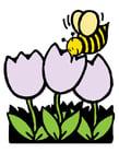 immagine tulipani e ape